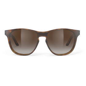 Rudy Project Soundshield Glasses, marron